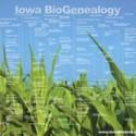 WA BioEvolution 2008 Poster